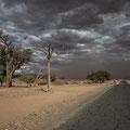 Sossusvlei Sandsturm