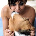 SPOSA CON BEAGLE WEDDING DOG SITTER MONTEROTONDO