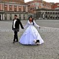 MATRIMONIO WEDDING DOG SITTER NAPOLI