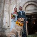 SPOSI CON IL CANE PESCARA WEDDING DOG SITTER