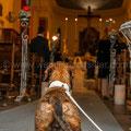 MATRIMONIO DA CANI VERSILIA WEDDING DOG SITTER ANTICA FATTORIA DI PATERNO