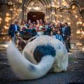 FOTO DAL PUNTO DI VISTA DEL CANE WEDDING DOG SITTER