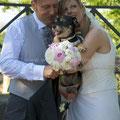 MATRIMONIO WEDDING DOG SITTER ROMA