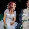 MATRIMONIO WEDDING DOG SITTER SPOSI CANE  TENUTA DI RIPOLO