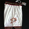 Баскетбольные шорты НБА СВИНГМЕН ФИЛАДЕЛЬФИЯ 76 цена 1999 руб.