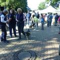 DogWalk 2017 , Foto: Rainer von Kempen