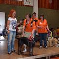Claudia Ludwig stellt Tierschutzvereine vor