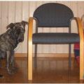 Wir sitzen NEBEN dem Stuhl