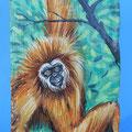 [492] SILVANO SCOLARI Gibbone
