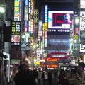 kabukicho: electric landscape