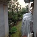 奥の庭地は夏になると蚊がいっぱいで草取りも大変でしたが・・・