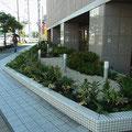 完成後の花壇。低木主体の寄せ植え花壇をご提案いたしました。