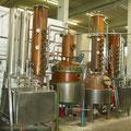 Hier entstehen die verschiedenen Liköre im Auszugsverfahren. Dazu werden die Kräutersäckchen für einige Wochen in ein Alkohol-Wasser-Gemisch gelegt.