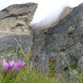 Blick auf Bergführerweg