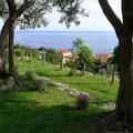 Ausblick von unserer Villa Kunterbunt