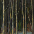 072 Winterwald 50x101