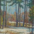 199 Wald bei Schneeschmelze 45x61