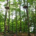 Kletterwald Bild 2