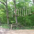 Kletterwald Bild 1