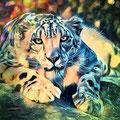 Animal Print Leopard - Kunstdruck auf Leinwand