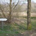 Vauxteich - rechts der Weg zum Damm