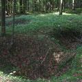 Weitere ehemalige französische Unterstände im Wald um den Bunker
