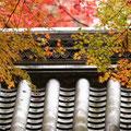 京都、長岡京 Komyo-ji in Nagaokakyo city, Kyoto prefecture