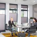 Duette für moderne Beschattung für Ihr Büro