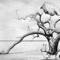 Squat en Namibie n°2 - Claude Rossignol