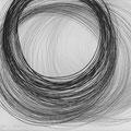 Ulla Nentwig 2012 Graphit auf Papier 130x150 cm