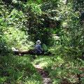ジャングルに潜むバタフライハンター? 雅恵でした。