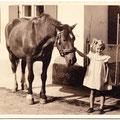 Das Pferd und das Elternhaus