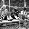 2006年『宇宙猿』のための取材写真(犬山モンキーパーク)