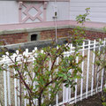 八幡山の洋館 南側 2018年3月20日