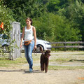 Sommerfest auf dem Hundeplatz