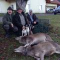 19.12.2014: Ich konnte auf Einladung von Willibald Schilcher nach herrlicher Morgenpirsch Hirschkalb und Tier erlegen, nochmal ein herzliches Weidmannsdank für die Einladung Willi!!!!!