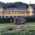 22.11.2014: Bei der Stöberjagd in Eisenkappel konnten 2 IIIer-Hirsche (8er und Spießer), 1 Tier, 2 Kälber, 1 Rehgeiß und ein Fuchs erlegt werden!