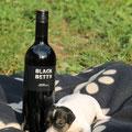 """""""Black Betty vom Woisbach"""", der Name ist Programm :-) (Hündin - vergeben)"""