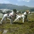 Fritzi, Maxi und Mama Emmi