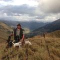 """10.10.2014: Ich durfte mit dem Besitzer von """"Amber Ale vom Woisbach"""", jetzt Lucy, einen wundervollen Jagdabend und -morgen mit reichlich Gamsanblick in der Steiermark verbringen, leider war keine Passende dabei, aber ich komme wieder ;-)"""
