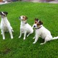PAPA ROCKY mit KIRA und LOTTI