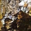 Grotta Gigante - Krokodil und Affenkopf