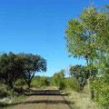 Nationalpark Cabaneros - Weg zum Besucherzentrum
