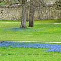 Frühling im Klostergarten Zwiefalten.
