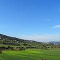 Grünes Marokko.