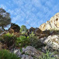 Caminito del Rey - im Tal entlang des ...