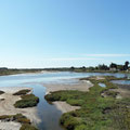 Lagunenlandschaft
