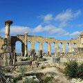 In den Ruinen von Volubilis - Basilika.