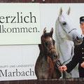 Haupt-und Landesgestüt Marbach