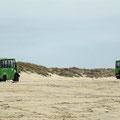Tour mit Unimogs durch die Dünen im Naturschutzgebiet Donana bei Matalaskana